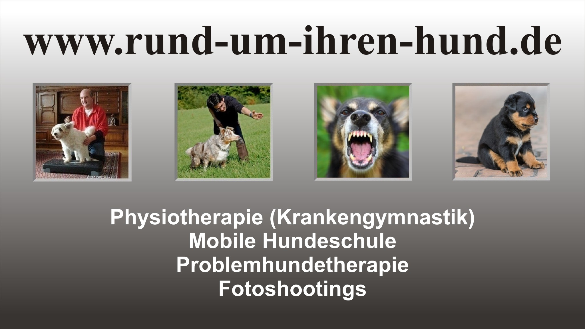 Infos zu Hundephysiotherapie, mobile Hundeschule, Problemhundetherapie, Fotoshootings